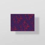 postalcards-mockup3