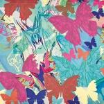 borboletas-caminho