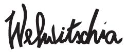 logo_welshitsia